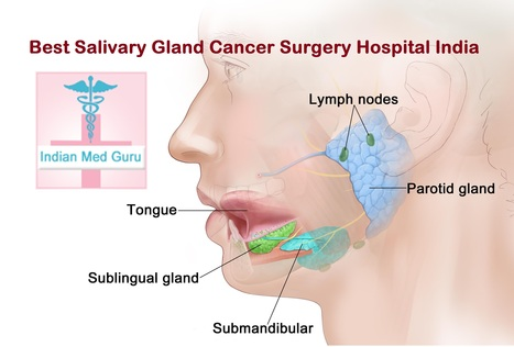 Best Salivary Gland Cancer Surgery Hospital in India | Health and Medicine | Scoop.it