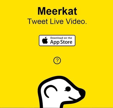 Meerkat | Zuyd2.0 | Scoop.it