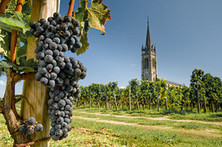 Pomerol Is a Wine Lover's Wonderland | Vitabella Wine Daily Gossip