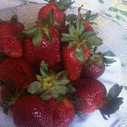 Snacks healthy and deliciousss! | Catering, Food Baskets, Delicatessan, Parties, Weddings | Scoop.it