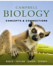 Test Bank For » Test Bank for Campbell Biology: Concepts & Connections, 7th Edition: Jane B. Reece Download | Biology Test Bank | Scoop.it