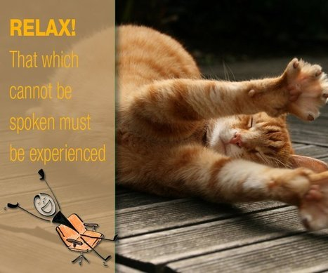 What These Furry Felines Can Teach Us About Well-Being | Cats Rule the World | Scoop.it