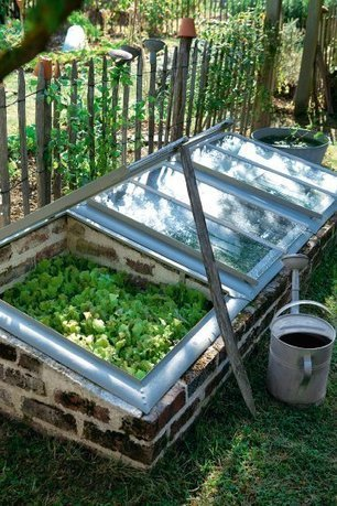 Greenhouse from recycled windows | Backyard Gardening | Scoop.it