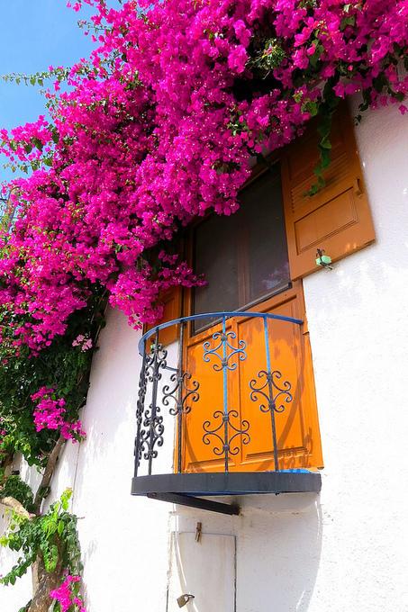 Balcony with bougainvillae | Mis imágenes | Scoop.it