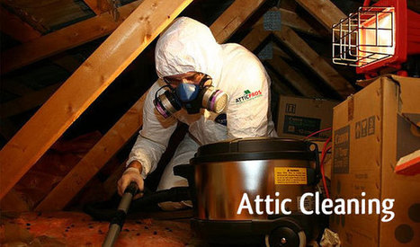AtticPros - Oakland Attic Cleaning Services & Insulation Remova | kimberly8ig | Scoop.it