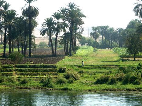 The Nile. A Natural Landscape and a Cultural Landscape | Égypt-actus | Scoop.it