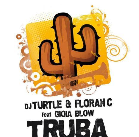 DEEJAY TURTLE  : TRUBA LE TITRE D' UN PERFORMER MUSICAL HYPERACTIF | vanessa caniquit | Scoop.it