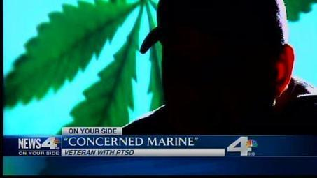 On Your Side: Medical marijuana and PTSD | Cannabis News & Information | Scoop.it