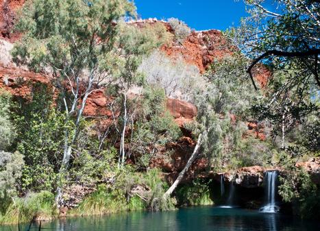 Ecotourisme en Australie   Site de voyage Le Guide Trotteur   tourisme   Scoop.it