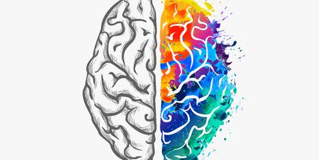 Neuroeducación | EDUCACIÓN en Puerto TIC | Scoop.it