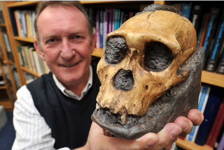 Loughborough scientists find a key link in our evolution | Evolution is now | Scoop.it