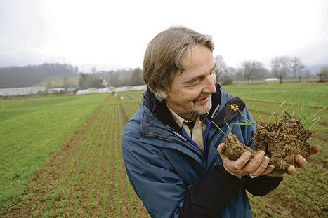 Les sols doivent être vivants pour être productifs sur le long terme | Agriculture durable | Scoop.it