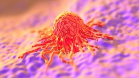 Global Initiative Seeks 1,000 New Cancer Models | Amazing Science | Scoop.it