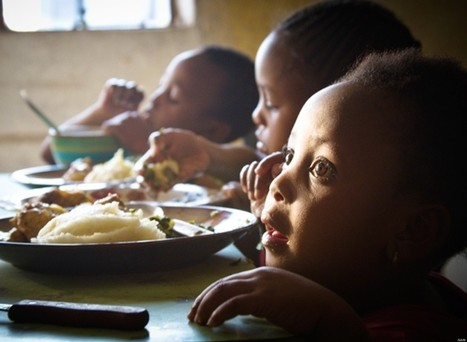 Access to Nutrition Index Calls on Businesses to Improve Their Nutrition Practices - Huffington Post (blog)   Food Analysis and Nutrition   Scoop.it