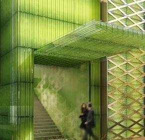 Bientôt des algues sur les toits pour produire de l'énergie   Bio, Santé et Bien-être   Scoop.it