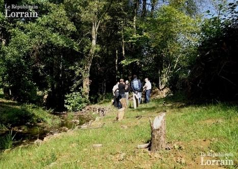 Pays de Bitche : prendre soin des espaces naturels   water news   Scoop.it