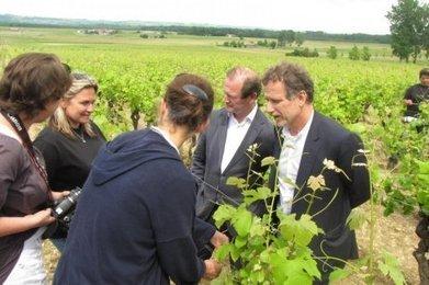 Sauternes : Charles Berling dans les vignes d'Yquem - Sud Ouest | Le vin quotidien | Scoop.it