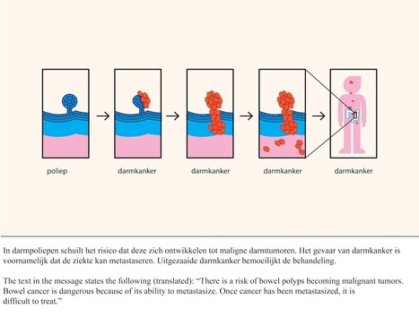 The Effectiveness of Health Animations in Audiences With Different Health Literacy Levels: An Experimental Study | Patient Decision Aids for Oncology Care | Scoop.it