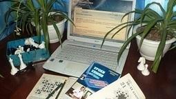 Сообщество учителей Intel Education Galaxy -> Конкурс авторских блогов «Учитель-блогер и мобильные технологии» (8 октября-2 декабря 2013 г.) | Сетевые конкурсы и проекты | Scoop.it