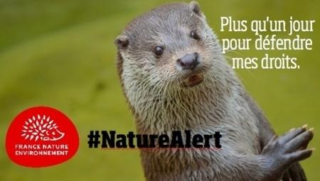 Un nombre record de citoyens se sont exprimes en faveur de la protection de la nature en Europe | Planète, Nature et Biodiversité | Scoop.it