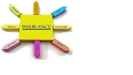 Insurance Domain Knowledge ~ Software Testing   shahicool72   Scoop.it