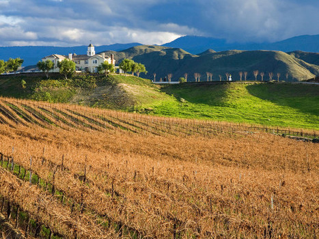 Attention, Wine Lovers: You Really Need To Visit Southern Italy | Italia Mia | Scoop.it