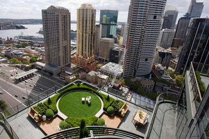 Sydney's New Green Roofs and Walls Policy - Sourceable | GreenRoofs | Scoop.it