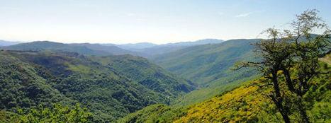 Randonnées en Cévennes - FIRA - AGROPASTORALISME : ELEVEUR ET TONDEUR A L'HONNEUR | Cévennes Tourisme spécial FIRA 11 mai 2013 | Scoop.it