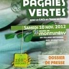 Rendez Vous Sportif & Animations: Les pagaies vertes à Montsinéry | Une Saison en Guyane | La Guyane | Scoop.it