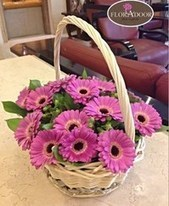 Send Thinking of you Flowers when Someone is in Mind | Online Florist in Egypt | Scoop.it