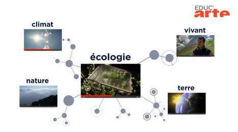 Organiser des vidéos avec une carte mentale sur EducArte | la nouvelle technologie et le FLE | Scoop.it