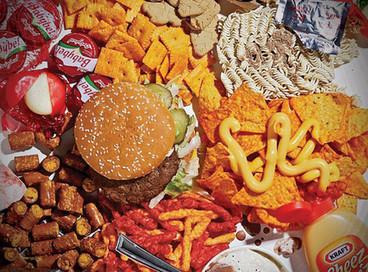 Maternal 'junk food diet' may alter baby's brain development | Maternity Nutrition | Scoop.it