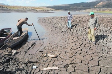 "Soil Degradation Threatens Nutrition in Latin America | Inter Press Service (""it's becoming worse"") 
