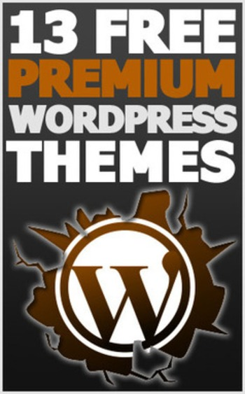 13 Free Premium Wordpress Themes You Can Install Today | Business in a Social Media World | Scoop.it