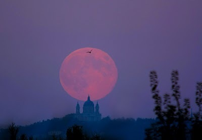 Scienzaltro - Astronomia, Cielo, Spazio: La Luna e Superga, a Torino l'altra sera | Planets, Stars, rockets and Space | Scoop.it