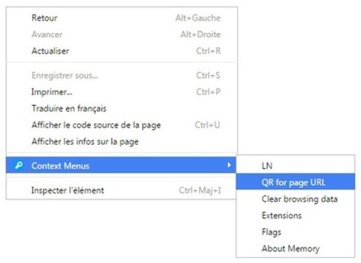 Le plein d'outils dans le menu contextuel de Chrome | Le Newbie | TIC et TICE mais... en français | Scoop.it