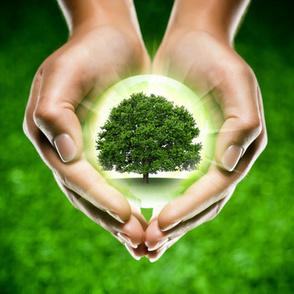 L'environnement nous rend de plus en plus malades | Toxique, soyons vigilant ! | Scoop.it
