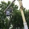 Lovett Tree Service