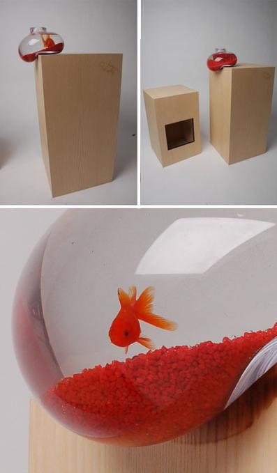 Falling Fish: Lopsided Glass Aquarium for Living on the Edge | Designs & Ideas on Dornob | Designer | Scoop.it
