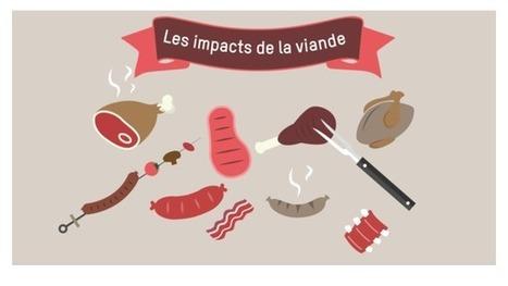 4 min pour comprendre le vrai poids de la viande sur l'environnement | La Longue-vue | Scoop.it