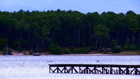 Vidéo - Lac de Sanguinet : le petit paradis landais...   Vacances dans les Landes   Scoop.it