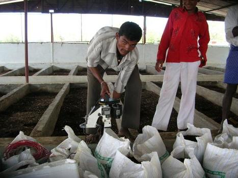 Farmers can save and earn more through vermi technology | Earth Citizens Perspective | Scoop.it