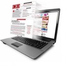 CIO.PDF 73: les DSI, bientôt de simples fournis...   Emploi IT   Scoop.it
