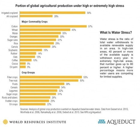 Why the relationship between water and agriculture needs to change   Wheat   Scoop.it