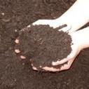 Faire du compost - Trucs et astuces | Compostage : Déchets verts & Biodéchets | Scoop.it