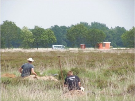 3,000 year old cultivated fields unearthed in the Netherlands   Bronze Age   Scoop.it