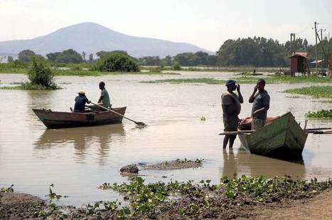 En Afrique, la multiplication des barrages fait le lit du paludisme   EntomoNews   Scoop.it