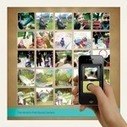 Photo apps go retro with 'disposable' smartphone cameras and mailable photo postcards | Art  meets Technology | Scoop.it