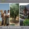 Bibliographie sur l'Agriculture Familiale du CIHEAM-IAMM - IST Agropolis International | Agricultures familiales | Scoop.it