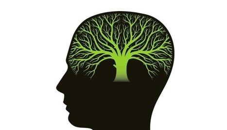 "Is the ""Growth Mindset"" an Agile Mindset? | Teacher's corner | Scoop.it"